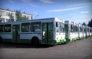 Предложение о запуске новых микроавтобусов