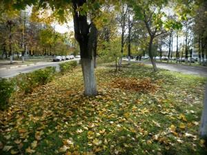 Листва на бульваре города Московский