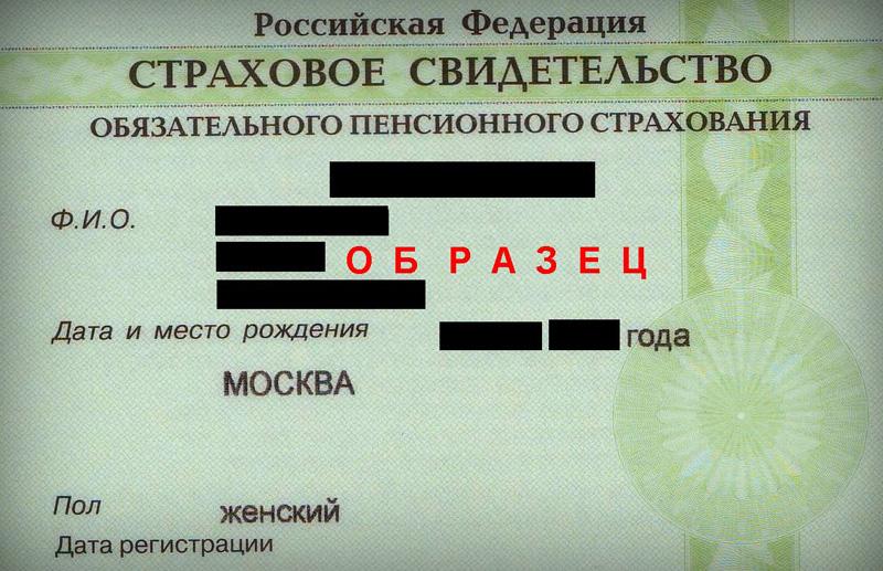 Заявление на снилс физического лица бланк 2015 скачать - ef