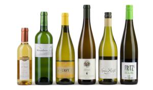 Как выбрать вино: советы, рекомендации и правила употребления напитка