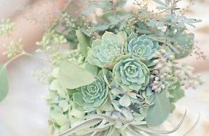 Цветы — «драгоценные камни» нашей планеты.